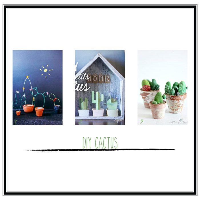 diy cactus selección 1