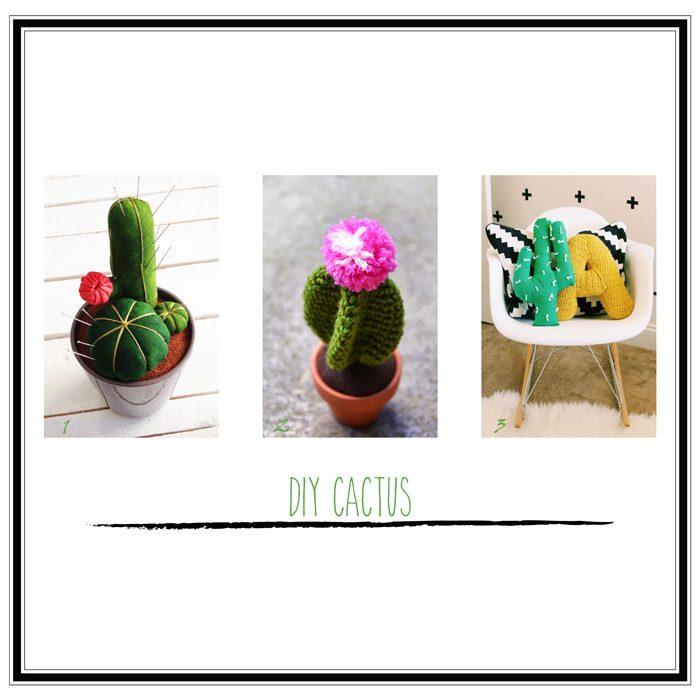 diy cactus selección 2