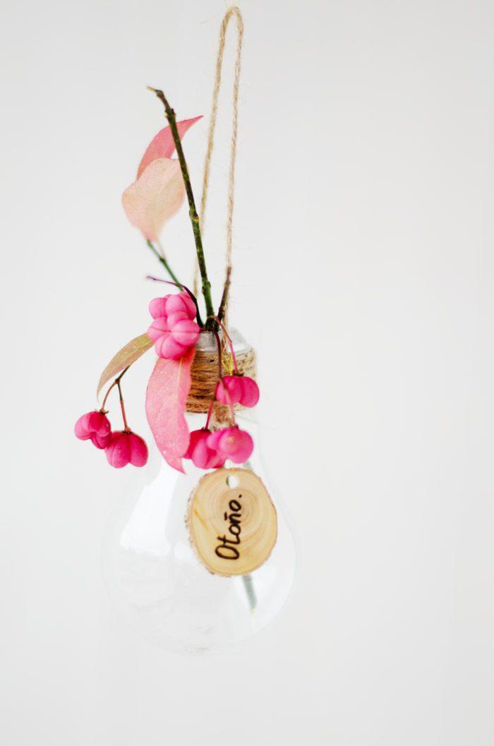 hojas rosas frutos bombilla