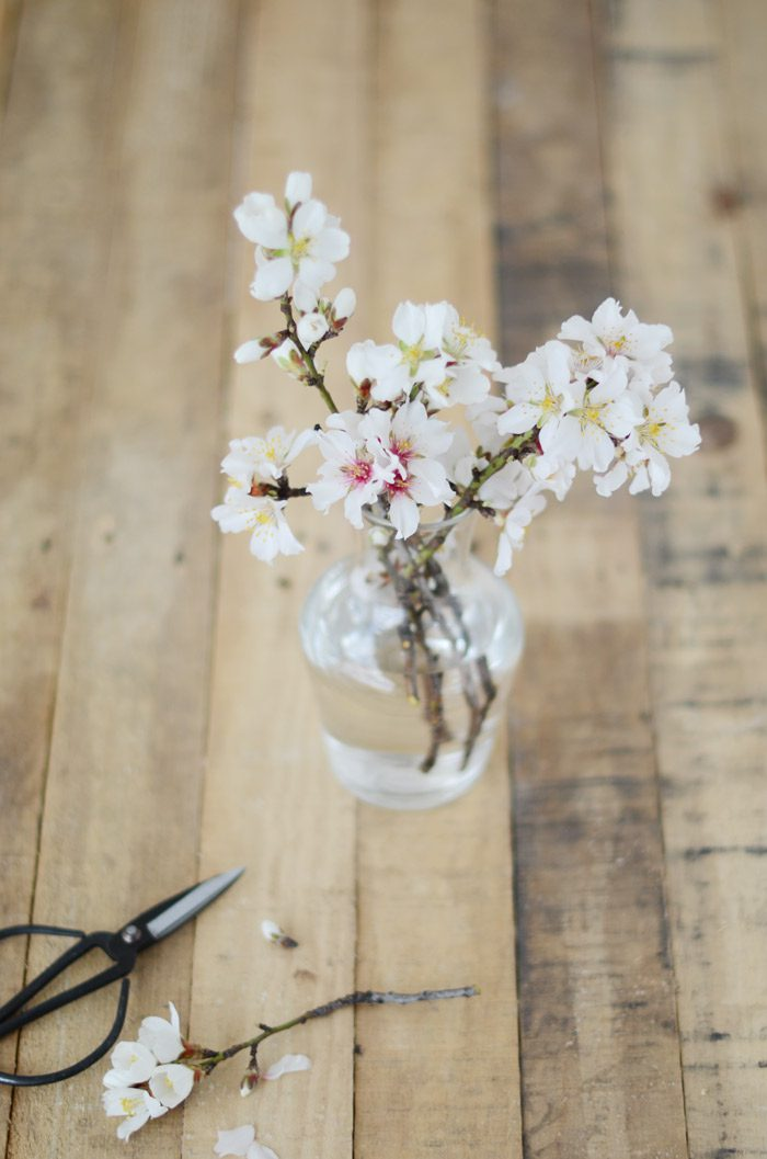 Jarron con flor de almendro