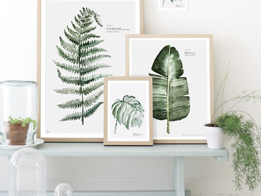 Tendencia: decorar con láminas botánicas