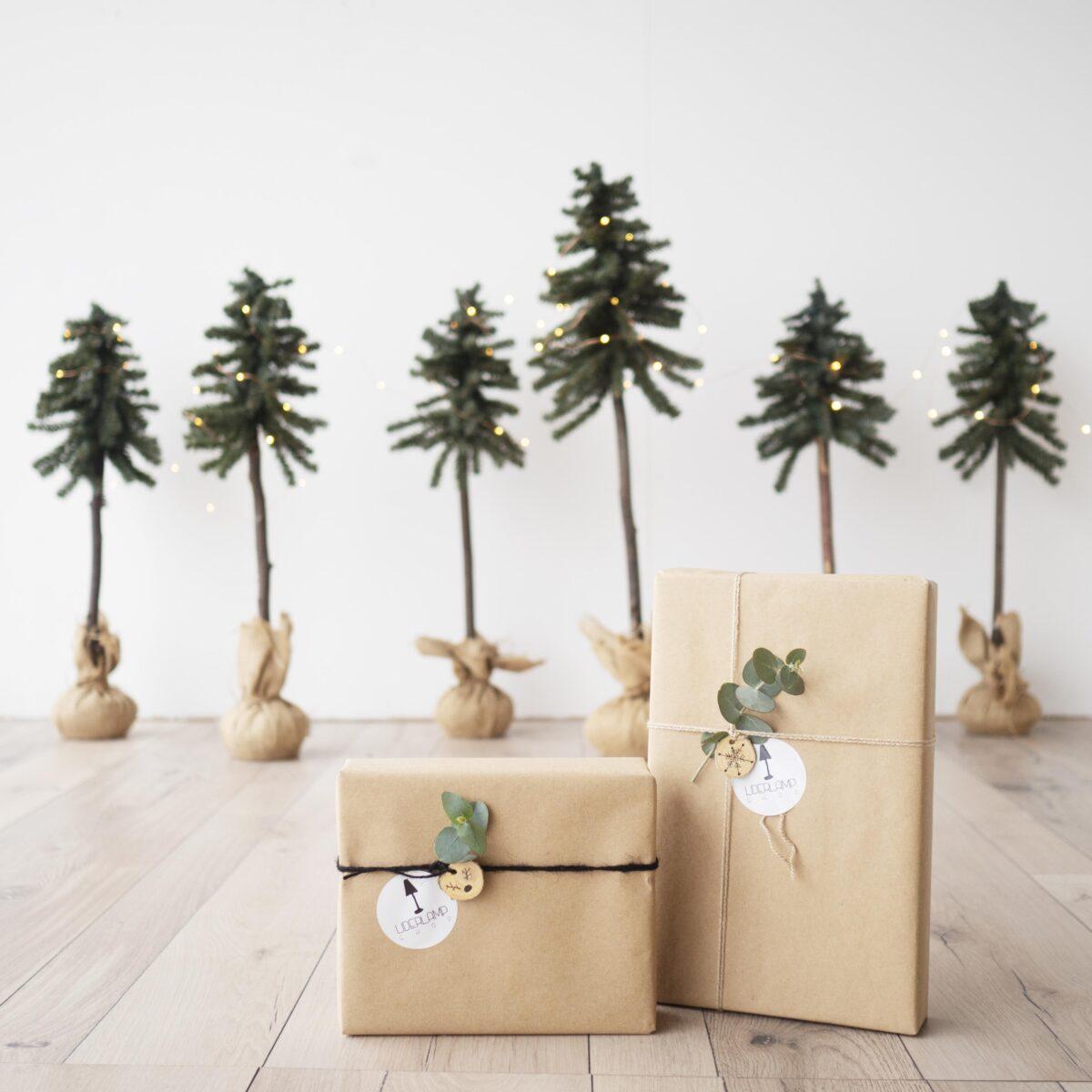 Te ayudamos a encontrar el regalo perfecto